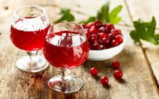Настойка на клюкве с водкой и спиртом в домашних условиях: пошаговые рецепты