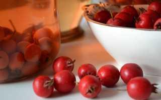 Настойка шиповника на самогоне: рецепты приготовления