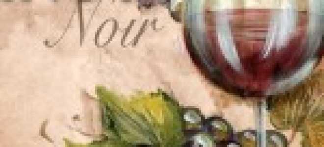 Вино Пино Нуар (Pinot Noir): описание, цена, сорта винограда, как правильно выбрать и пить