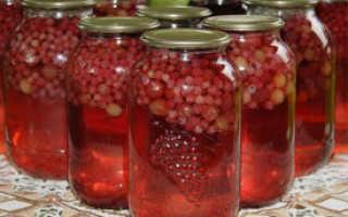 Как сделать вино из компота: рецепты домашних алкогольных напитков из старых и забродивших фруктовых заготовок