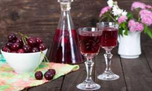 Настойка из вишни на самогоне: простые рецепты приготовления в домашних условиях