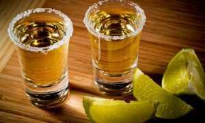 Рецепты текилы в домашних условиях из самогона: как сделать мексиканский алкогольный напиток