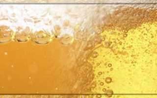 Фильтрованное и нефильтрованное пиво: чем отличаются светлое, темное, пшеничное, что значат эти термины