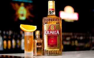 Виды текилы: названия, описание и фото «Ольмека» и других лучших сортов мексиканского напитка