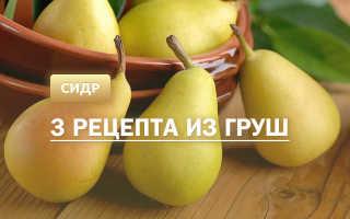 Сидр из груш: приготовление в домашних условиях, подробные рецепты, необходимые ингридиенты