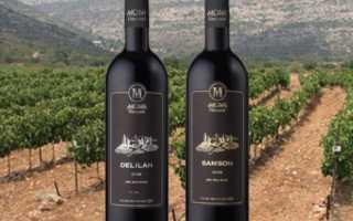 Кошерное вино: что это значит, история появления, стоимость напитка для праведных иудеев