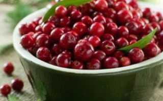 Вино из клюквы: лучшие рецепты приготовления клюквенного алкогольного напитка в домашних условиях
