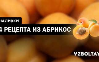 Наливка из абрикосов: простые рецепты приготовления в домашних условиях