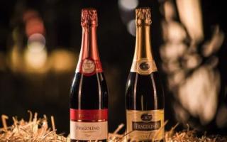 Шампанское Фраголино (Fragolino): описание и особенности клубничного и земляничного итальянского вина