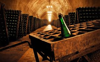 Детское шампанское: фото и цены, также есть ли мемы, кто делает Абрау Дюрсо