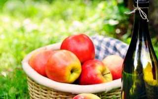 Яблочный сидр в домашних условиях: простой рецепт приготовления из сухофруктов и сока