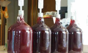 Вино из старого варенья в домашних условиях: простые и быстрые рецепты приготовления