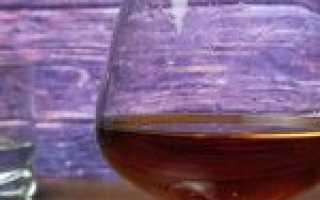 С чем пить коньяк: как правильно употреблять в чистом виде и с чем смешивать этот напиток