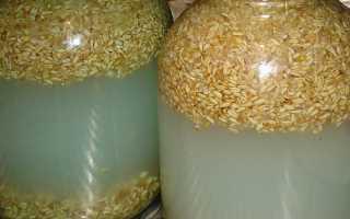 Брага из пшеницы пророщенной: рецепт без дрожжей для самогона