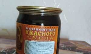 Квас из сусла в домашних условиях: рецепты приготовления традиционного русского напитка
