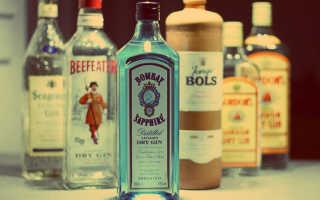 Марки джина: самые известные и хорошие виды напитка, цены на популярный алкоголь