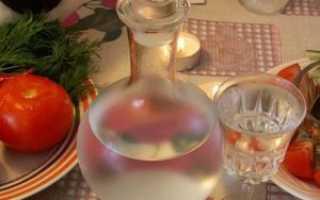 Как пить чачу правильно: чем закусывать грузинский продукт из винограда, можно ли употреблять с колой